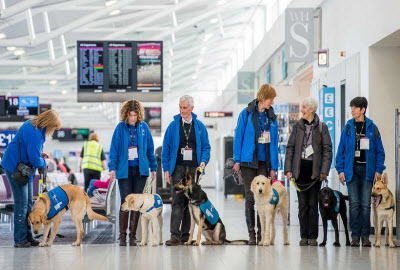 Edinburgh airport guide dogs training day