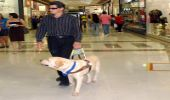 Air travel seen through the eyes of a blind passenger