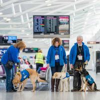 Edinburgh Airport hosts guide dog training day